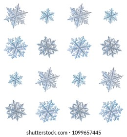 Collection of snowflakes isolated on white background. Macro photo of real snow crystals: large stellar dendrites with complex, ornate shapes, fine hexagonal symmetry and long, elegant arms.