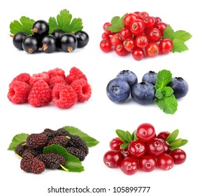 Collection of sweet berries on white