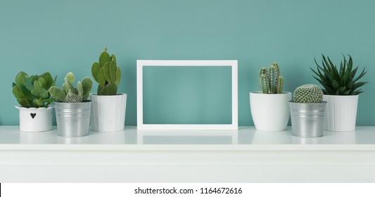 Collection of various cactus and succulent plants in different pots. Potted house plants on white shelf against turquoise colored wall and picture frame mock up banner.