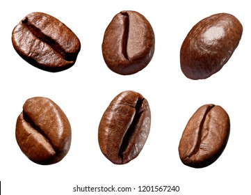 collection of various coffee bean on white background