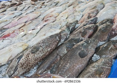 Collection of various fish on ice display at traditional open air market