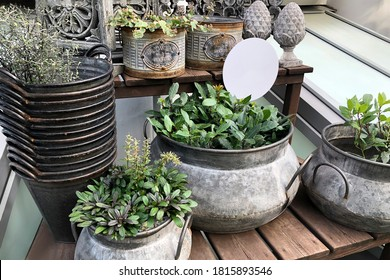 Collection of vintage metal planters with indoor plants on wooden table surface