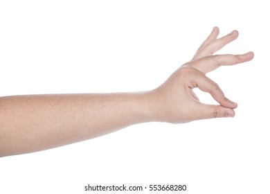 collection of woman hands on white background