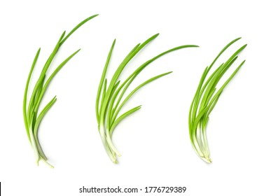 Collection of young green onion isolated on white background. Set of multiple images. Part of series