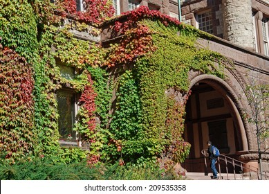 college building with colorful fall ivy
