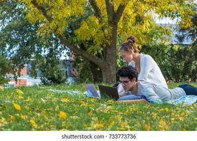 College students studying outside with beautiful fall foliage
