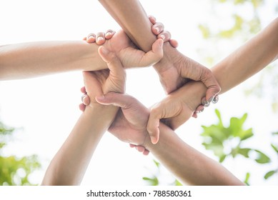 College Students Teamwork Stacking Hand Concept