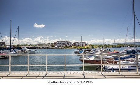 collingwood marina view in summer