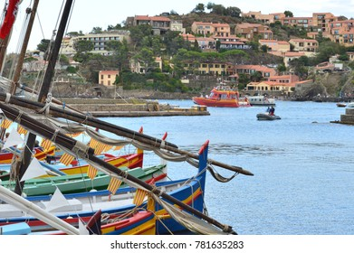 Collioure, FRANCE on August 16, 2014 : Catalan boats in the harbor and villas on the hill.