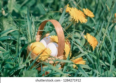 Coloful decorative Easter eggs in a miniature rustic wooden basket, yellow dandelions blooming meadow in spring