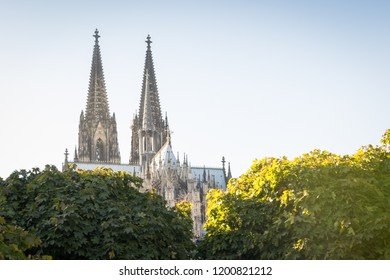Cologne Cathedral on a evening in autumn