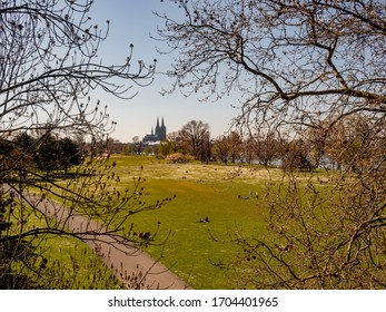 Cologne, Germany, 4 April 2020. Rheinpark on the right bank of the river with Cologne Cathedral in the background on a sunny spring day.