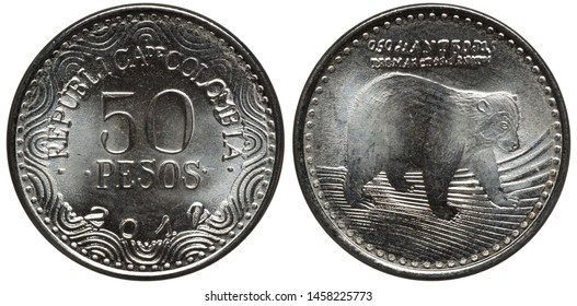 Colombia Colombian coin 100 one hundred pesos 2012, denomination and date within inner circle, bear-like animal right,
