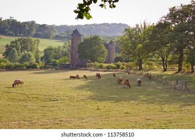 Colombier Castle in Aubrac, France