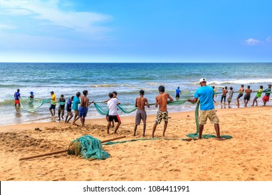 Colombo, Sri Lanka - January 14, 2018. Fishermen pull a trawl with a catch on the beach on a sunny day