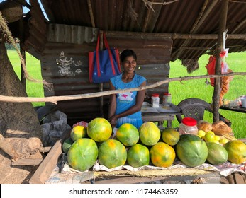 Colombo, Sri Lanka - November,16 2017: Sri Lankan woman sells coconut water in the morning on the road from Colombo airport to Kandy.