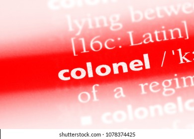 colonel word in a dictionary. colonel concept