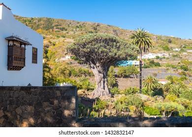 colonial town of icod de los vinos in tenerife, Spain