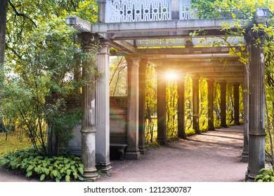 Colonnade in the old autumn park. Tsarskoye selo