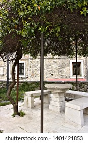 Colonnata, Carrara, Tuscany, Italy. In the church square there is an original pergola covered by a specimen of Trachelospermum jasminoides. Under the pergola of the benches and a table in white marble
