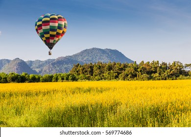 color air balloon over The farm of Crotalaria Juncea flower which use for soil improvem