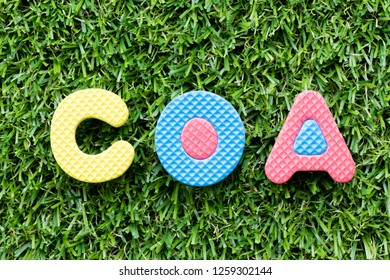 Color alphabet letter in word COA (abbreviation of certificate of analysis, certificate of authenticity, cause of action) on artificial green grass background