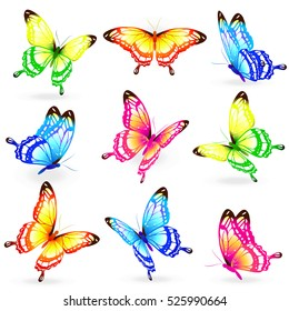 color butterflies,isolated on a white