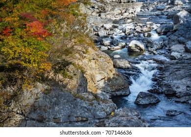 Color changing leaves mountain and river, Japan