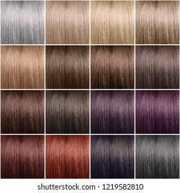 Color chart for hair dye. Neat rows. Tints. Hair color set. Diferent colors.