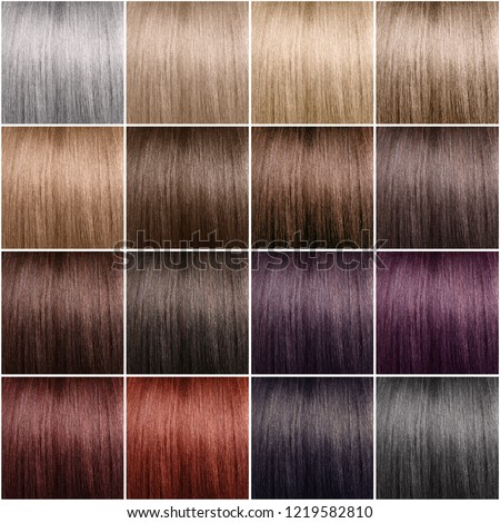 Color Chart Hair Dye Neat Rows Stock Photo Edit Now 1219582810