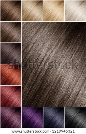 Color Chart Tints Hair Color Palette Stock Photo Edit Now