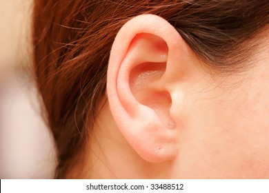 color closeup picture of brunette girl ear