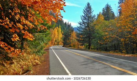 Color Drive - Autumn view along State Hwy 126 along the McKenzie River - OR