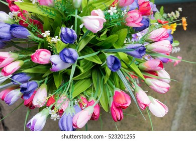 Color Full Flower