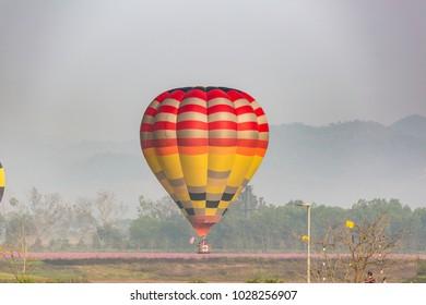 color hot air balloon over cosmos flower garden with mountain background