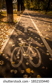 Color image of a bicycle lane symbol in a park, on an autumn day.