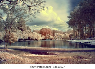 color infrared landscape