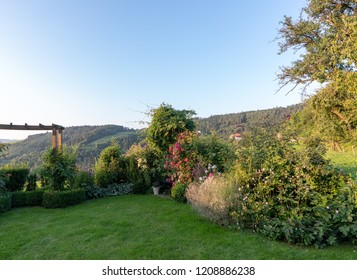 Color outdoor nature image of an idyllic garden with a bench, flowers,roses,anemones and lawn, a rural hilly farmland countryside in the background on a sunny summer day with clear blue sky