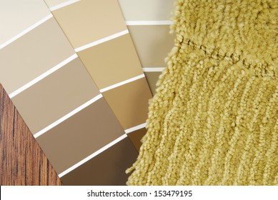 color paint   and carpet choice for interior