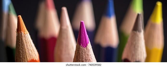 Color Pencils. Colored Pencils Background. Crayons Close Up.