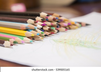 Lot of color pencils and a sheet of white paper. You can draw whatever you want.