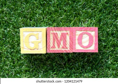 Color wood block in word GMO (abbreviation of Genetically Modified Organisms) on artificial green grass background