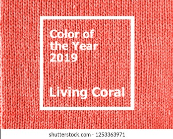 Color of the year 2019: Living Coral. Texture of colored knitted Jersey. Fashionable pantone color of spring-summer 2019 season. Knitted Living Coral texture.