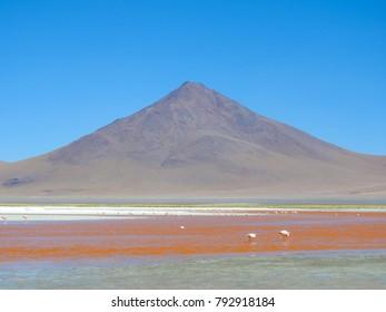 Colorada Lagoon, Bolivia