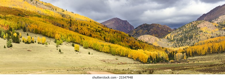 Colorado Fall colors near Victor
