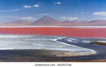 Colorado Lagoon   panorama, Altiplano, Bolivia