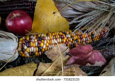 Colored Autumn corn with leaves and apples