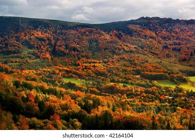 Colored autumn forest covering mountain valley