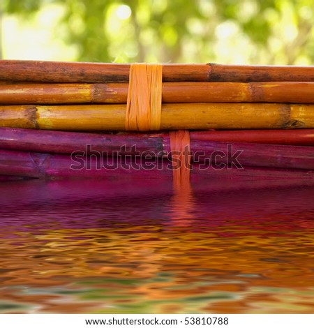 colored bamboo stick bundles with water