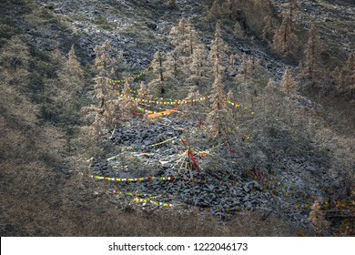 Colored buddhist prayer flags in the Huanglong National Park near Jiuzhaijou - SiChuan, China